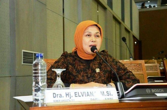 Anggota DPR RI Dapil Jambi Elviana
