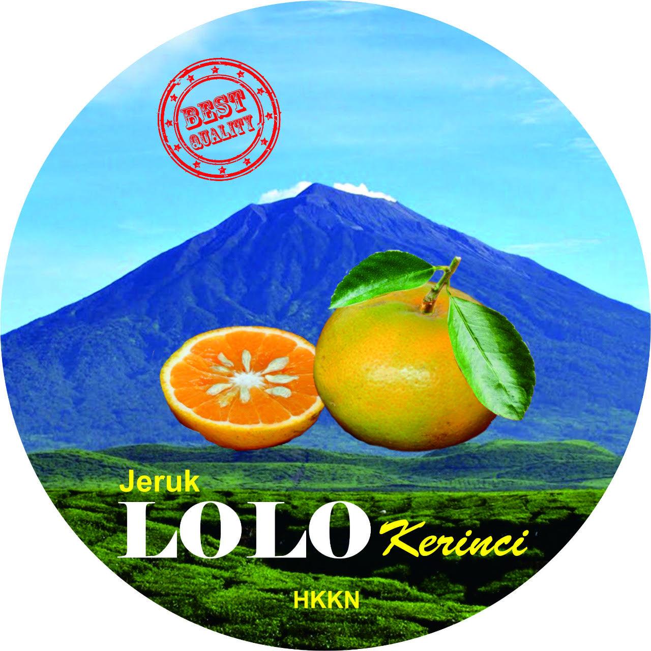 Jeruk Lolo khas Kabupaten Kerinci. PB HKK Nasional siap mengembangkan dan memasarkan produk KErinci ini di pasar nasional.