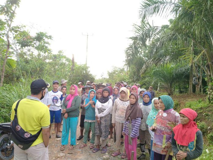 Emak-emak Lubuk Bangkar, Batang Asai berjibaku dalam program padat karya yang baru Sepekan Diluncurkan Bupati Cek Endra